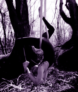 chandelier antigravity move. LDA home page image with purple tinge. featuring LDA teacher Sam in outdoor antigravity shoot