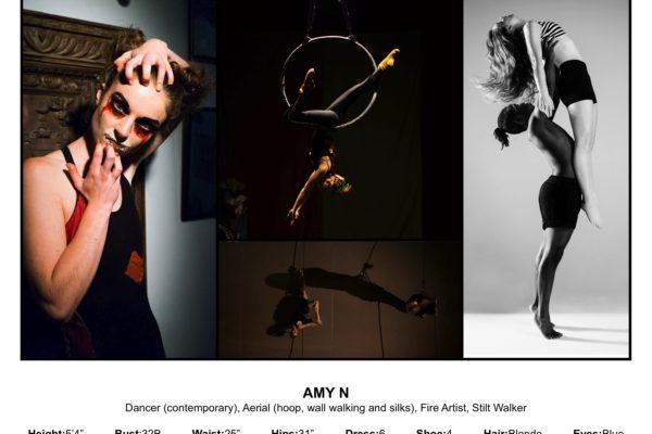 Amy N